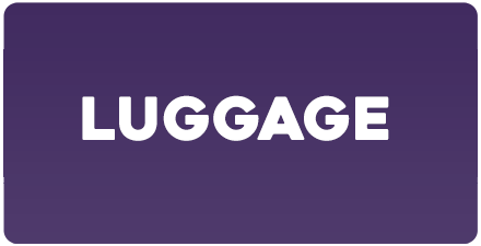 novelty-luggage